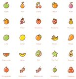 Ensemble d'icône de fruits Photo stock