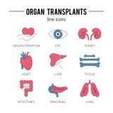 Ensemble d'icône de transplantation d'organe illustration de vecteur
