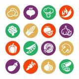 Ensemble d'icône de Web de vecteur de légumes Images libres de droits