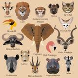Ensemble d'icônes africaines de visages d'animaux plat Photos stock