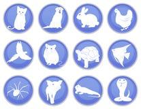 Ensemble d'icônes d'animal familier Image stock