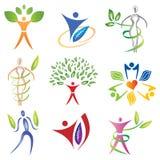 Ensemble d'icônes de corps avec des feuilles/éléments de feuillage Image stock