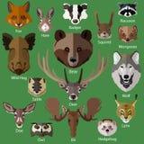 Ensemble d'icônes de visages d'animaux de forêt Photographie stock