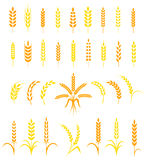 Ensemble d'icônes simples et élégantes d'oreilles de blé Photo libre de droits