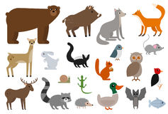 Ensemble d'illustration d'animaux sauvages Illustration Libre de Droits
