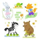 Ensemble d'illustration de vecteur de sport d'animaux illustration libre de droits