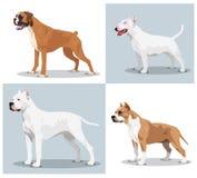 Ensemble d'image de chiens Image libre de droits