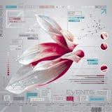 Ensemble d'infographics de fleur Photos stock
