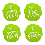 Ensemble d'insignes de nourriture Vegan, organique, frais, Eco Images stock