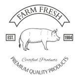 Ensemble d'éléments de conception de label de vecteur d'agriculture Photo libre de droits