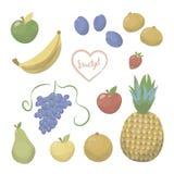 Ensemble d'objets lumineux peints brillants multicolores de fruits et de baies d'isolement sur le fond blanc illustration stock
