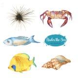 Ensemble d'objets marins illustration libre de droits
