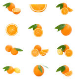 Ensemble d'oranges Photographie stock