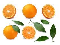 Ensemble d'oranges Images stock