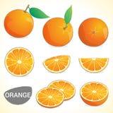Ensemble d'oranges avec la feuille dans divers styles Photos stock