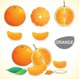 Ensemble d'oranges avec la feuille dans divers styles Photos libres de droits