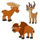 Ensemble de avec élans, cerfs communs, bison illustration de vecteur