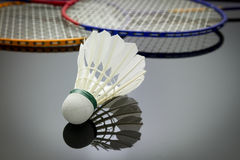 Ensemble de badminton Photo stock