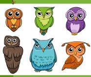 Ensemble de bande dessinée de caractères d'oiseau de hibou Images stock