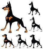 Ensemble de bande dessinée de chien de garde de pinscher de dobermann Image libre de droits