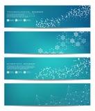 Ensemble de bannières scientifiques modernes ADN de structure de molécule et neurones abrégez le fond Médecine, la science, techn Photographie stock