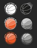 Ensemble de basket-balls sur un fond gris Photos stock