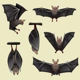 Ensemble de battes fantasmagoriques de Halloween illustration libre de droits