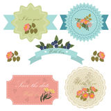 Ensemble de beaux insignes, labels et icônes floraux Carte de voeux Dans illustration de vecteur