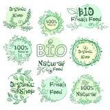 Ensemble de bio d'éléments de logotypes, organique, naturelle nourriture tirée par la main pour votre conception Vecteur illustration de vecteur