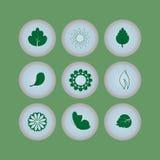 Ensemble de boutons d'icônes d'eco Photo libre de droits