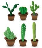 Ensemble de cactus Image libre de droits