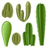Ensemble de cactus Photos stock