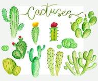 Ensemble de cactus d'aquarelle Photo libre de droits
