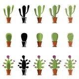 Ensemble de cactus dans différents styles Photos stock