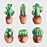 Ensemble de cactus mignon de broderie de vente dans icônes de pots photos stock