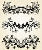 Ensemble de cadres floraux de noir de cru Photo stock