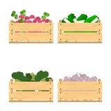 Ensemble de caisses avec des veggies Photographie stock libre de droits