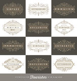 Ensemble de calibre de logo de vintage avec les cadres calligraphiques de flourishes Images libres de droits