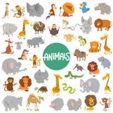 Ensemble de caractères animaux de bande dessinée grand Photo libre de droits