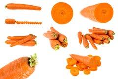 Ensemble de carottes d'isolement sur le blanc Images libres de droits