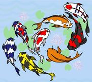 Ensemble de carpes lumineuses japonaises illustration libre de droits