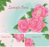 Ensemble de carte florale avec les roses roses Images libres de droits