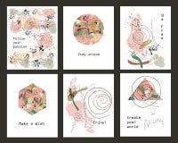 Ensemble de cartes photos stock