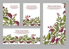 Ensemble de cartes, affiches, insectes avec les ornements floraux Fleurit des éléments illustration stock
