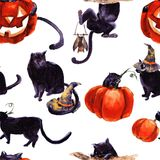 Ensemble de Cat Cartoon With Different Actions, Halloween Image stock