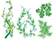 Ensemble de centrales décoratives vertes avec des fleurs - ENV illustration stock