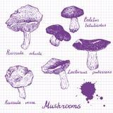 Ensemble de champignons linéaires de dessin Image stock