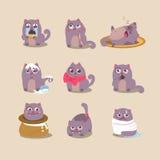 Ensemble de chat mignon de bande dessinée dans diverses poses Photo libre de droits