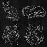 Ensemble de chats dans un style de croquis Il peut être employé pour des livres ou le logo Photos stock