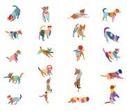 Ensemble de chiens colorés de terrier de vecteur Images stock